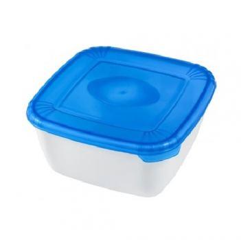 Контейнер пищевой пластик Plast team Polar 0,95 л